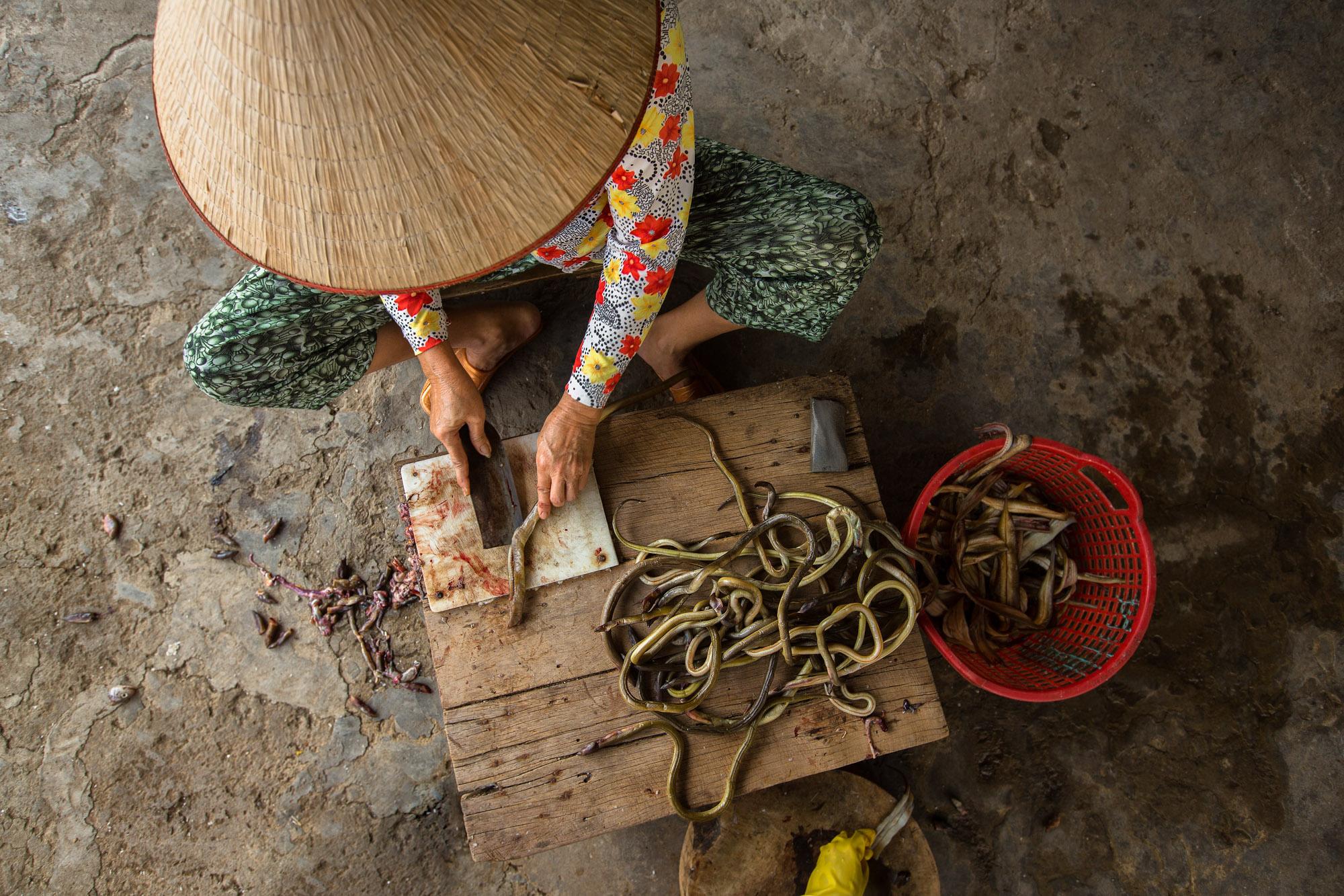 Woman Preparing Eels