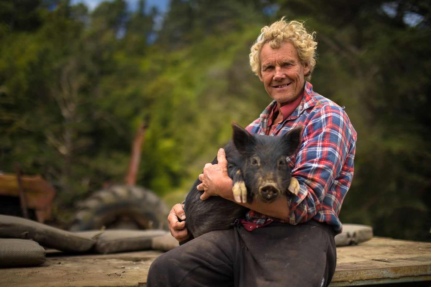 Everybody in New Zealand is friendly, but this guy takes the cake. He has over 40 pet pigs, and just hangs outside all day inviting tourists to play with them, all for fun