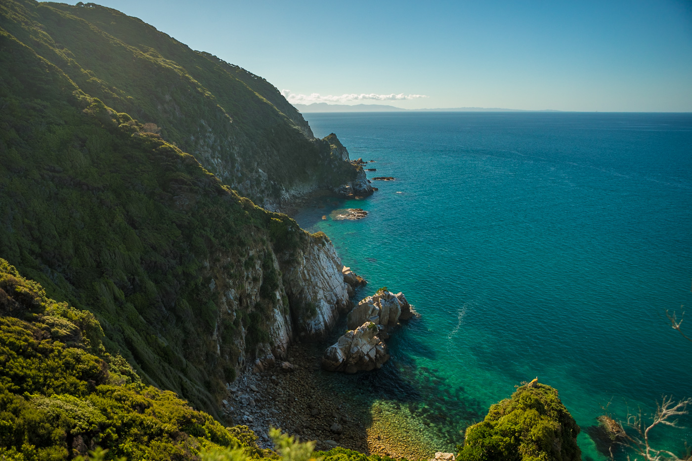 Abel Tasman coastline. Reminds me of Big Sur